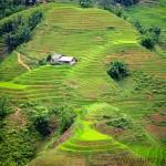 Ruong Bac Thang